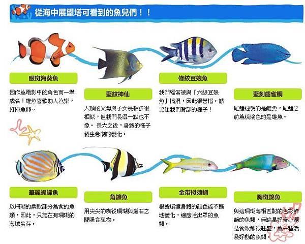魚種.JPG