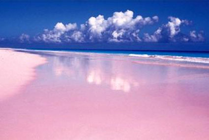 粉紅色沙灘-3.jpg