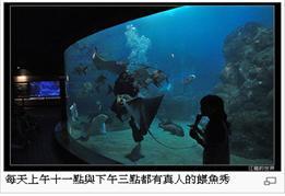 澎湖水族館1.jpg