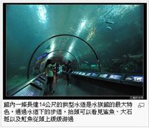 澎湖水族館2.jpg