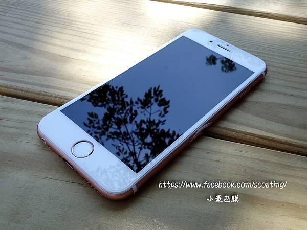 5D白色全.jpg
