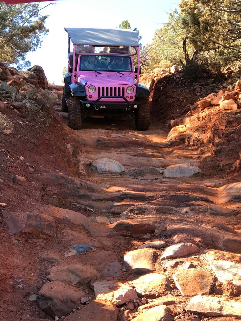 成寒 - pink jeep