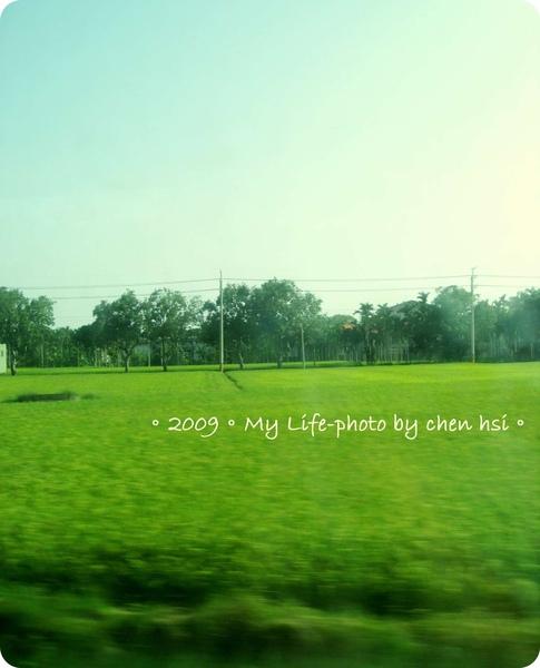 2009-草地.jpg