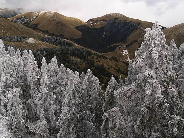 20080218-20080218合歡山之旅44.jpg