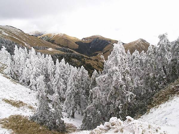 20080218-20080218合歡山之旅45.jpg