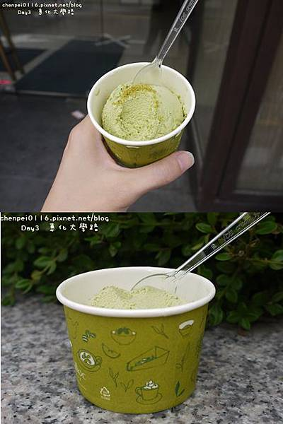 P1070675-vert.jpg