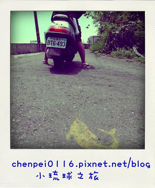 P1060952-pola.jpg