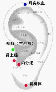 五官科疾病.jpg