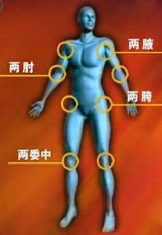 人體的自我免疫 1