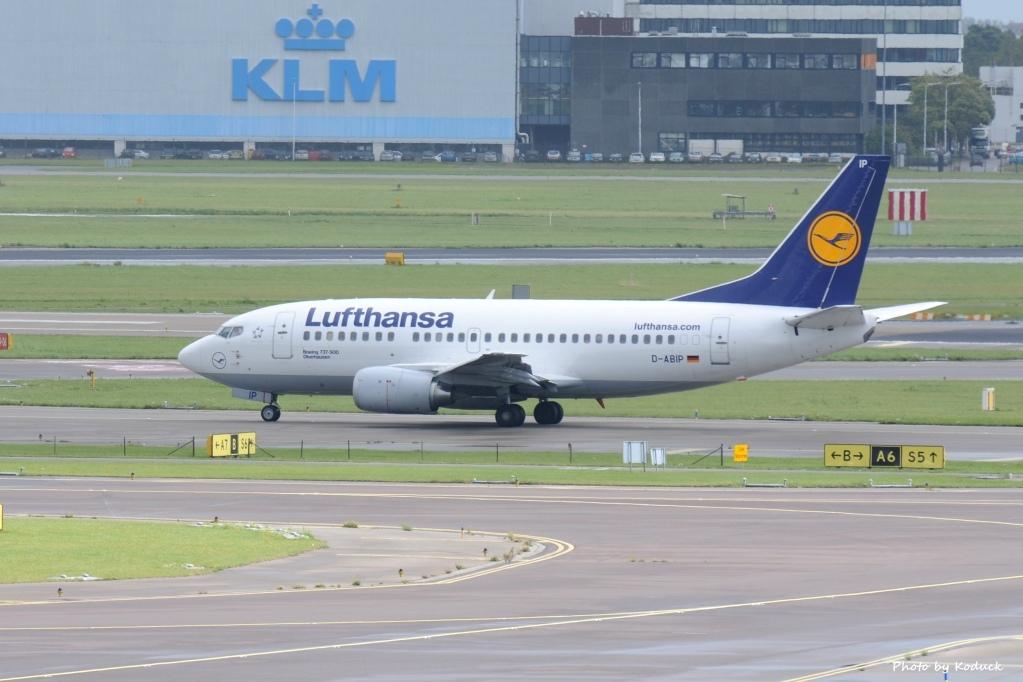 Lufthansa Boeing 737-530(D-ABIP)@AMS_1_20140818.jpg