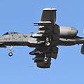 USAF A-10@DMA_13_20180320.JPG