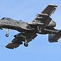 USAF A-10@DMA_19_20180320.JPG