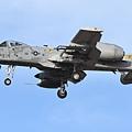 USAF A-10@DMA_22_20180320.JPG