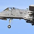 USAF A-10@DMA_24_20180320.JPG