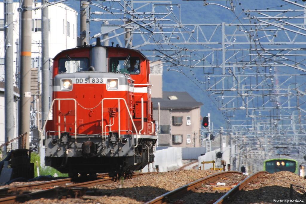 DD51 833@城東貨物線_1(1)_20080924.JPG