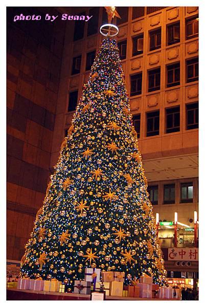 2013聖誕樹6.jpg