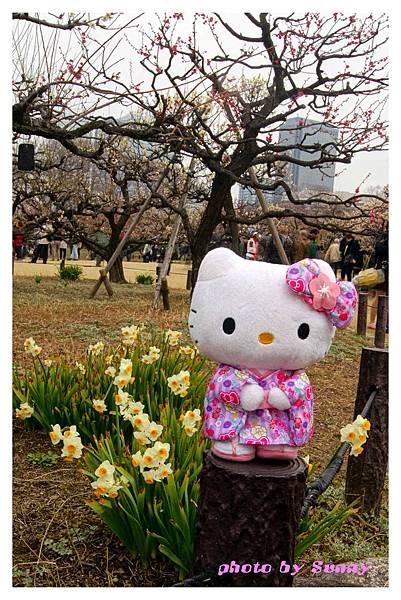 2014京阪大阪城14.jpg