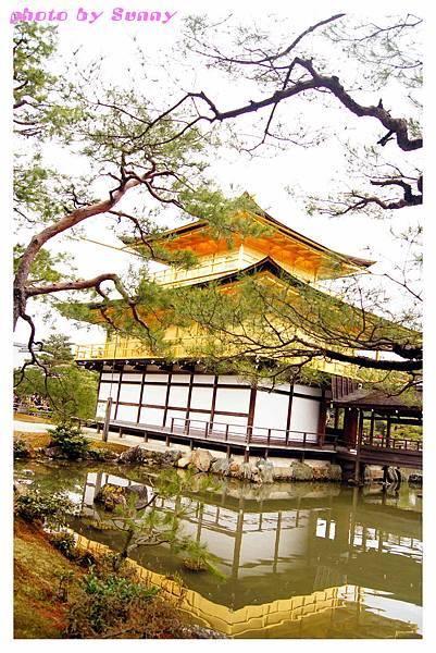 2014京阪金閣寺18.jpg