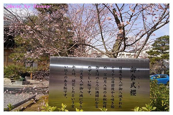 2014京阪妙蓮寺3.jpg