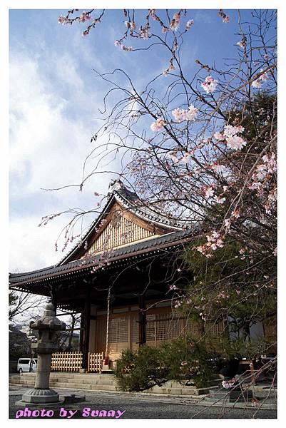 2014京阪妙蓮寺15.jpg