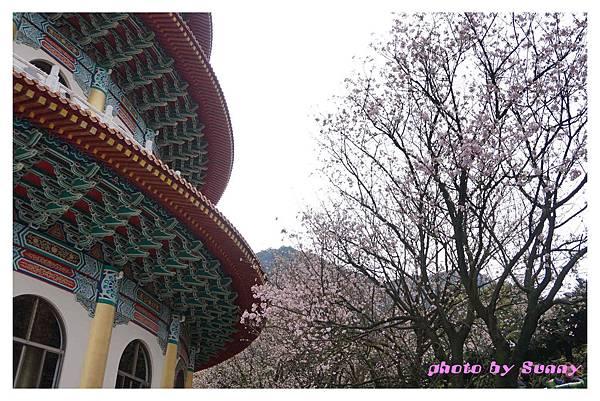 2014天元宮14.jpg
