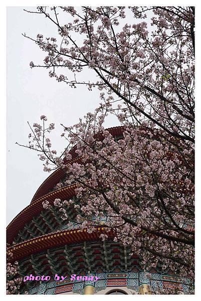 2014天元宮22.jpg