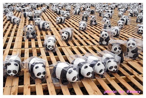 1600貓熊市府25.jpg