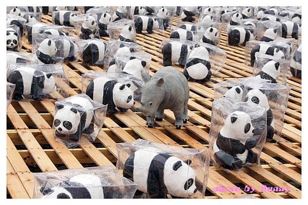 1600貓熊市府26.jpg