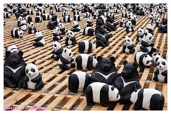 1600貓熊兩廳9.jpg