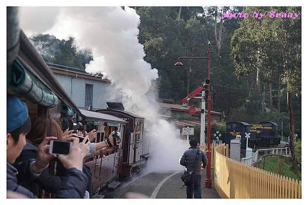 puffing billy蒸汽火車14.jpg
