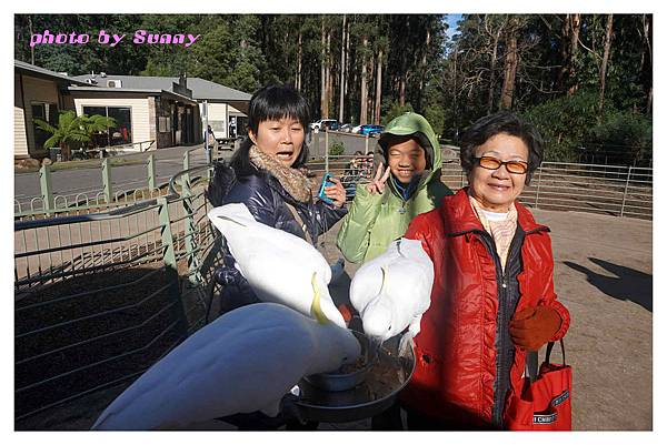 鸚鵡園3.jpg