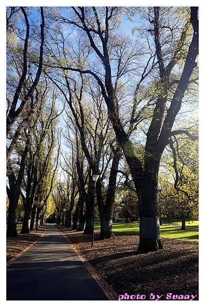 fitzroy gardens5.jpg