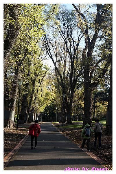 fitzroy gardens6.jpg