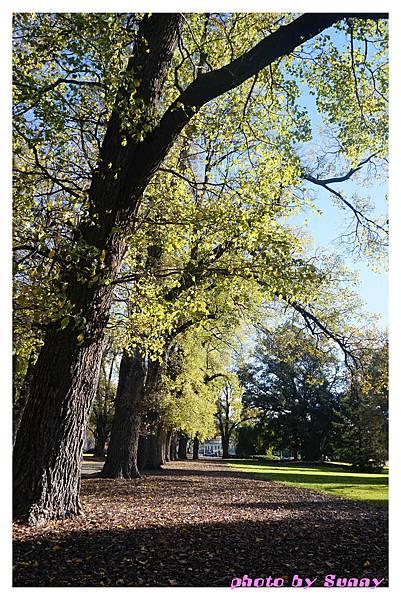 fitzroy gardens16.jpg