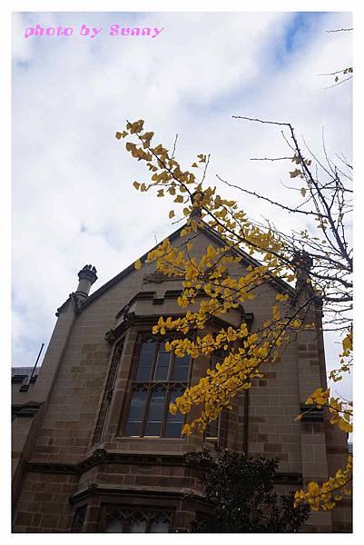 墨爾本大學15.jpg
