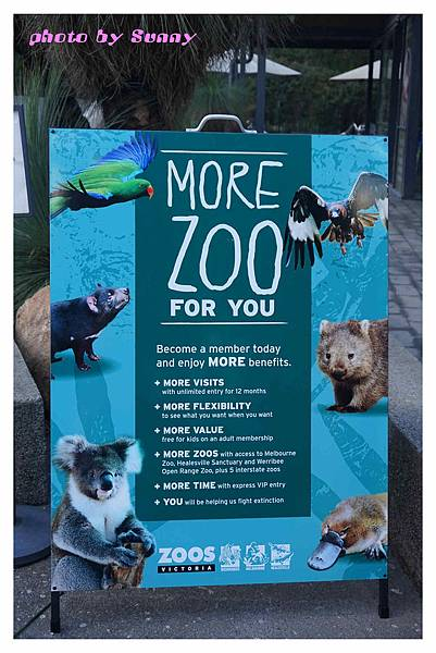 墨爾本Zoo2.jpg