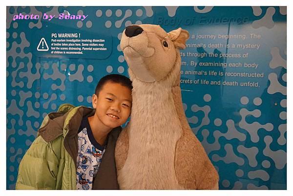 墨爾本Zoo10.jpg