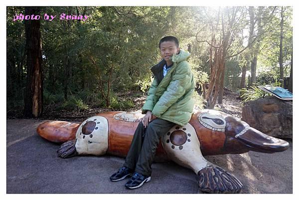 墨爾本Zoo12.jpg
