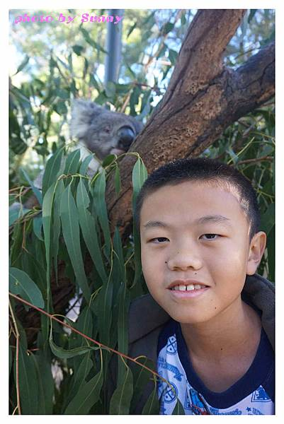 墨爾本Zoo22.jpg