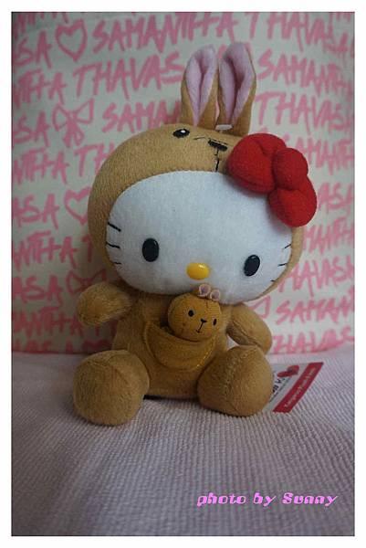 墨爾本kitty5.jpg