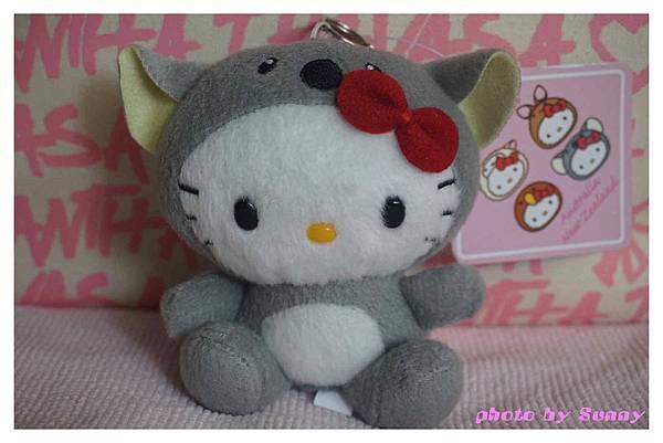 墨爾本kitty11.jpg