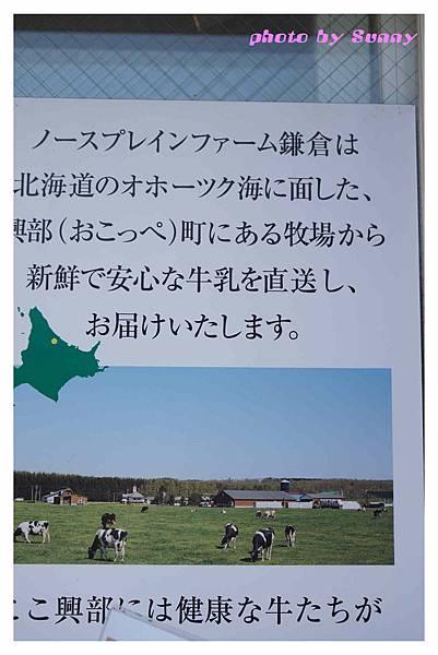 鐮倉散策12.jpg
