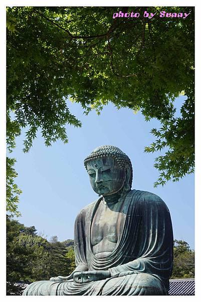 鐮倉大佛10.jpg