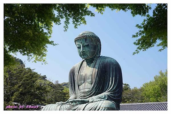 鐮倉大佛11.jpg