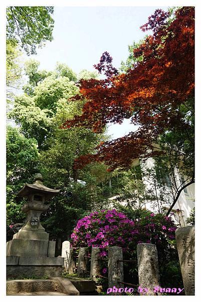 根津神社10.jpg