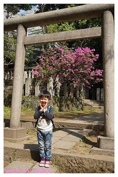 根津神社12.jpg