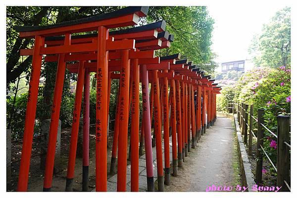 根津神社15.jpg