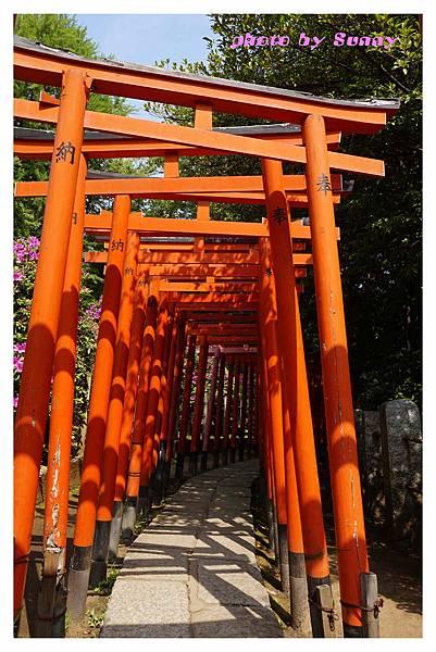 根津神社16.jpg