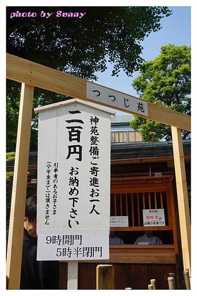 根津神社17.jpg