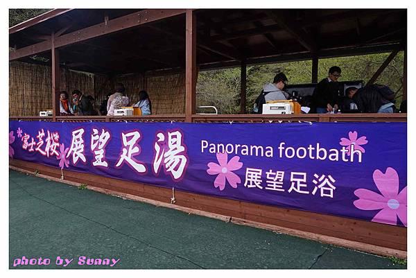 富士山芝櫻祭3.jpg